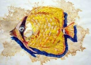 Fisch 3 1
