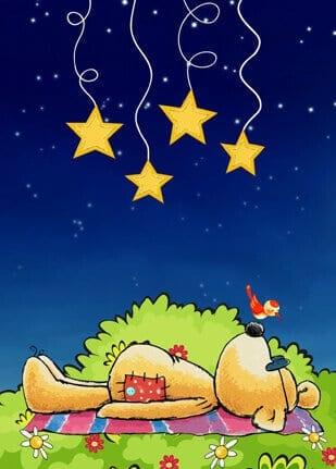 Ich seh den Sternenhimmel 1