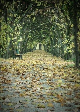 Postkarte Herbststimmung