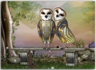 Postkarte Eulenpaar