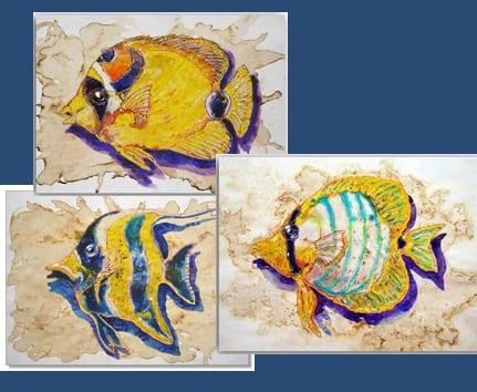 Postkarten Fische 3er Set