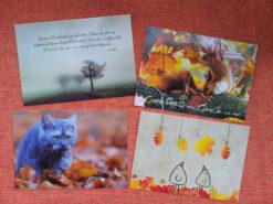 Postkarten-Set Herbst