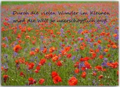 Blütentraum-Postkarte