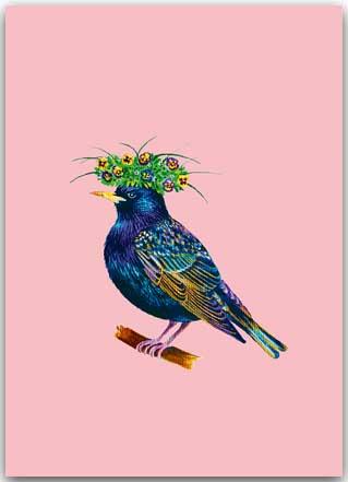 Postkarte Vogel Skv