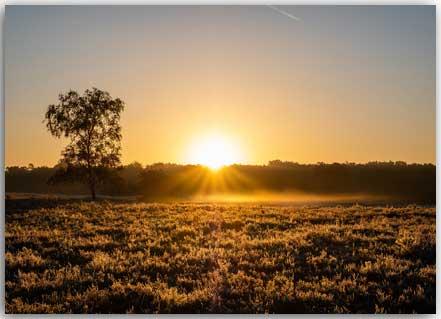 Postkarte Sonnenaufgang