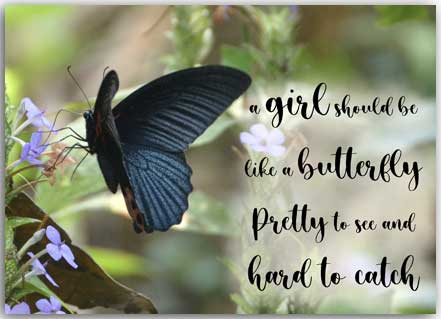 Postcard girls should be