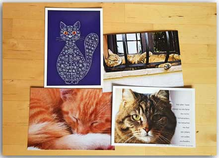 Postkarten Cat Set